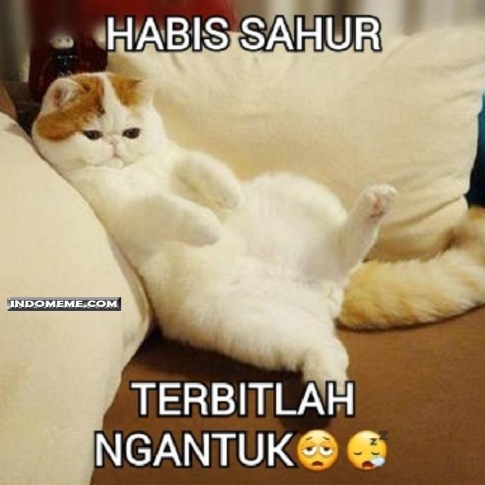 Koleksi Meme Comic Indonesia Terbaru Kocak Humor Lucu Dan Gila Habis Sahur Terbitlah Ngantuk