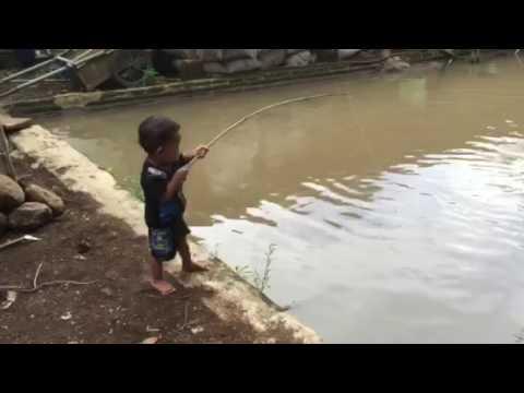 Unik Lucu Anak Kecil Mancing Vs Ikan Besar