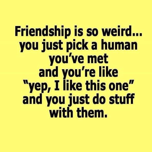 Top  Very Funny Friendship Quotes Friends Sayings