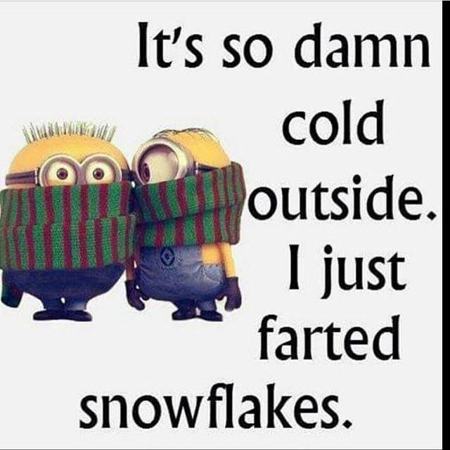 Its So Cold I Just Farted Snowflakes Winter Minion Minions Winter Quotes Winter Humor Minion Quotes Funny Winter Quotes Quotes About Winter Winter Humor