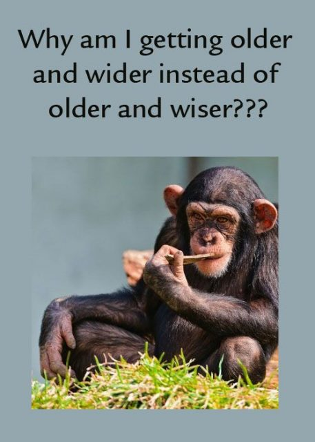 Funny Sayings About Getting Old Getting Older Ecard With A Funny Quote