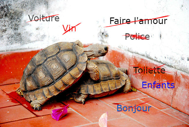 French Slang The Everyday Words They Dont Teach You At School