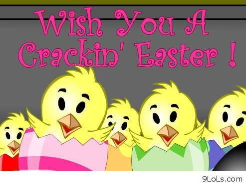 Funny Easter Sayings Funny Quotes Funny Animals Funny Easter