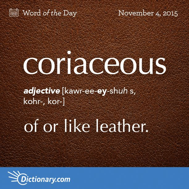 Dictionary Coms Word Of The Day Coriaceous Of Or Like Leather