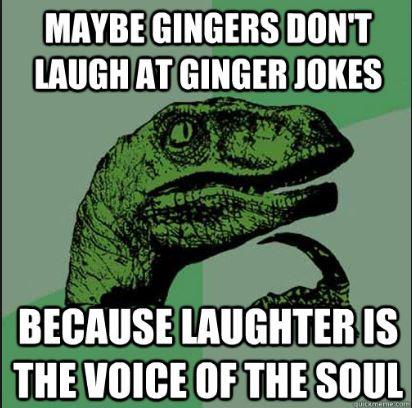 Funny Ginger Jokes