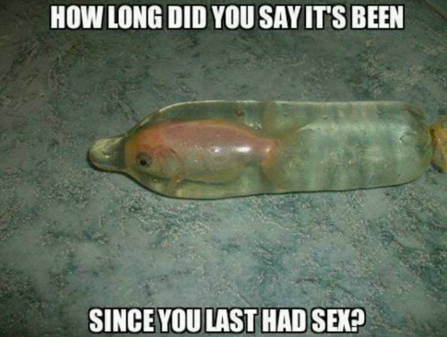 Funny Adult Meme How Long Did You Say