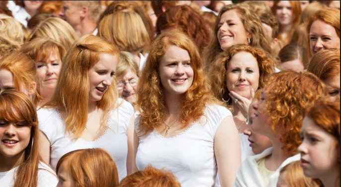 Ginger Jokes And Puns