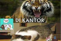 Ktawa.com Ayo Ketawa Gambar Meme Lucu Untuk di We Chat Setelah menikah Pria seperti singa ketika dikantor dan jadi kucing dirumah