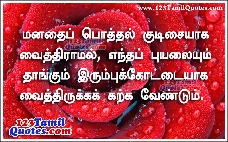 Tamil Daily Golden Words And Good Message Lines  Here Is A Tamil Language G