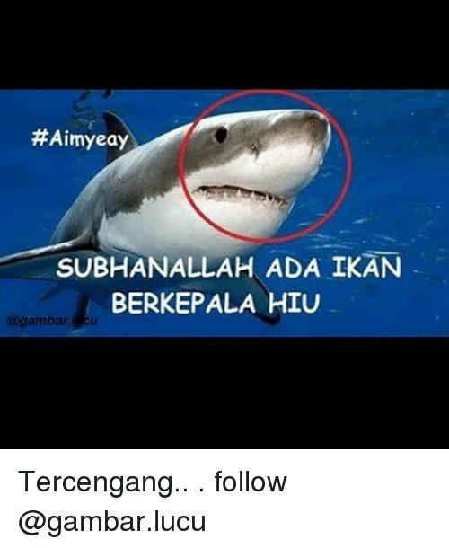 Indonesian Language Ada And Subh Lah Aimyeay Subh Lah Ada Ikan Berkepala