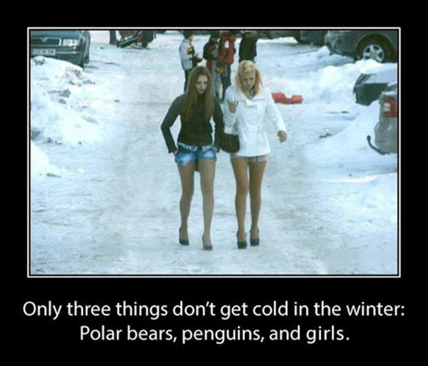 Women Dont Get Cold In The Winter Dump A Day Funny Sayingsfunny