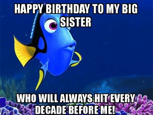 Happy Birthday To My Big Sister Who Will Alwayevery Decade Before Me