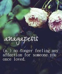 No Longer Feeling Any Affection For Someone You Once Loved