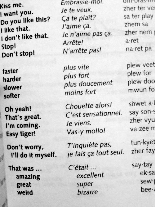 Cute Dictionary English French Language Lovely Useful Words