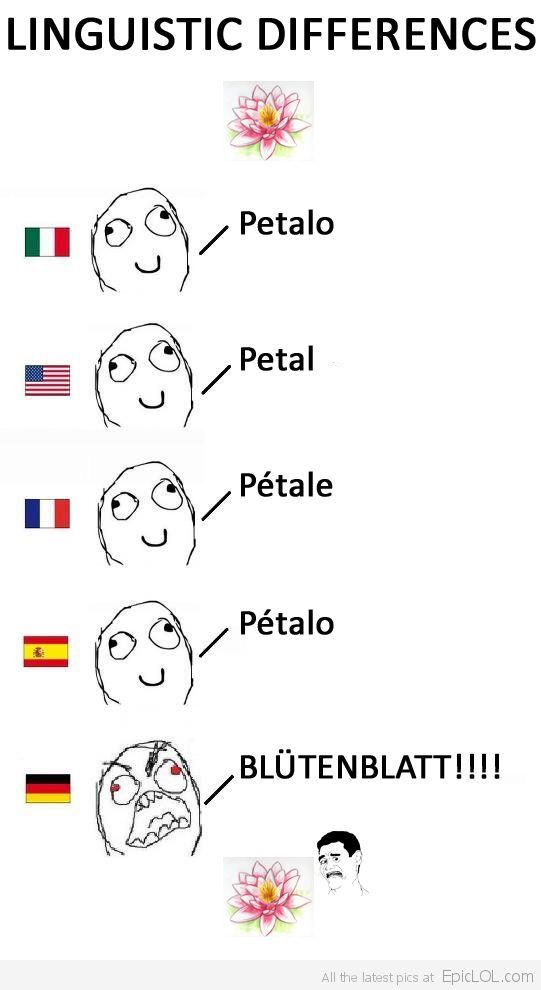 German Language Always Sounds Angry