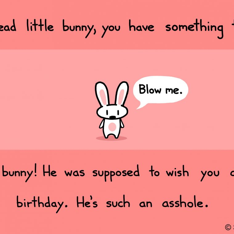 Happy Birthday Funny Sister Quotes Images About Happy Birthday On Pinterest Birthday Wishes