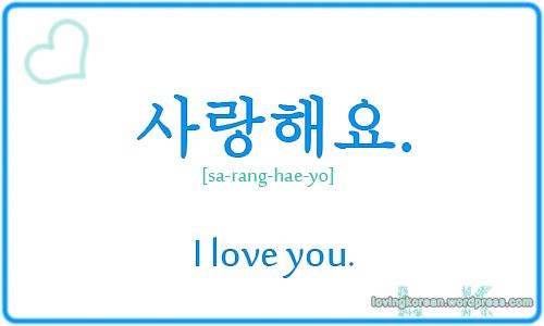 I Love You In Korean