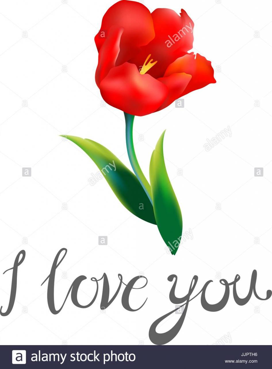 I Love You Watercolor Blue Word With Red Hearts On A White Background Bouquet Of Red And Yellow Flowers Greeting Card For Valentines Day Watercol