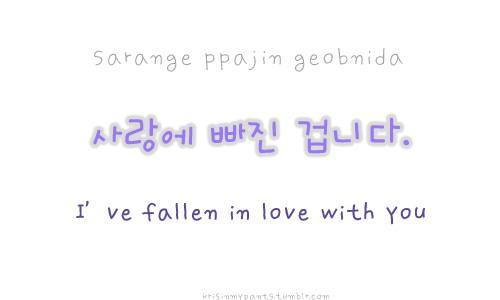 Korean Love And Language Image