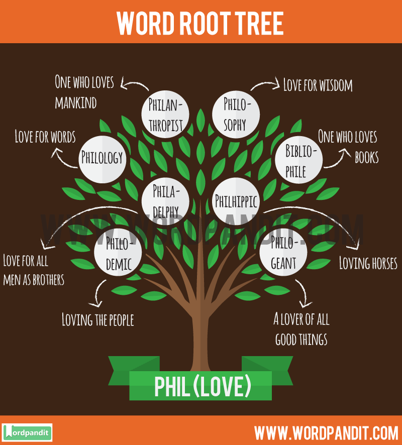 Phil Root Word Learn Words Related To Word Root Phil