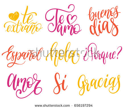 Vectorigraphic Set Spanish Translation Thank Stock Vector Shutterstock