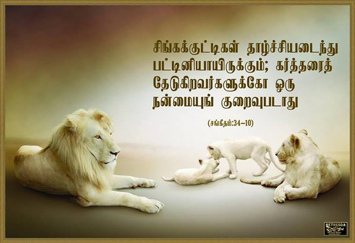 Tamil Christian Bible Verse Wallpapers