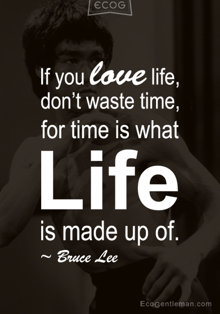 Graphic Quotes If You Love Life Dont Waste Time For Time Is What Life