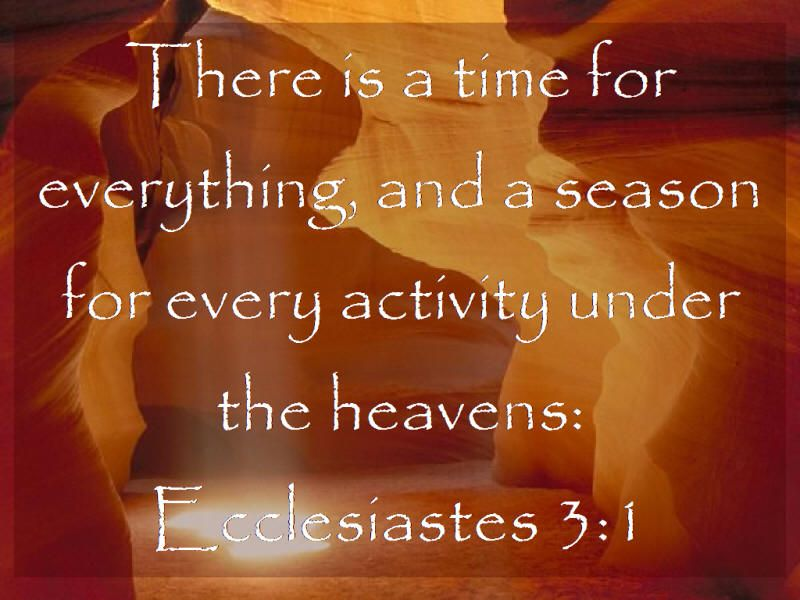 Bible Ecclesiastes