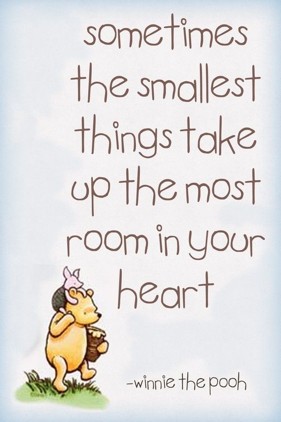 Wise Old Winnie The Pooh The Smallest Things Quotes Girly Cute Quote Disney Happy Love Quotes Winnie The Pooh Love Quote Piglet Heart Love