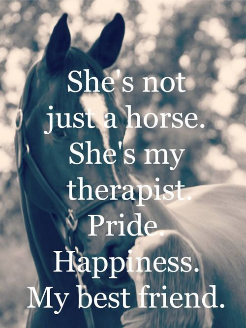 Shes Not Just A Horse