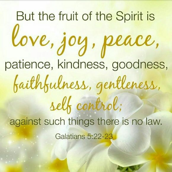 Discover And Share Bible Quotes On Gentleness Explore Our Collection Of Motivational And Famous Quotes By Authors You Know And Love