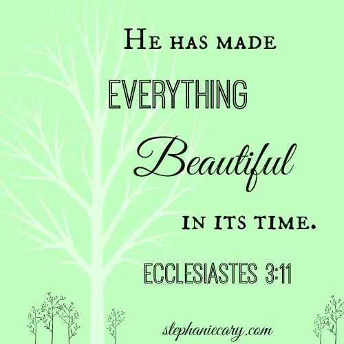Ecclesiastes  More At Http Beliefpics Christianpost  C B Christian Encouragement Quotesbible