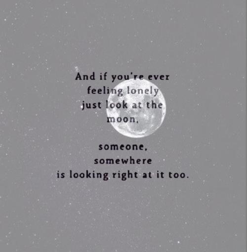 Love Quotes Tumblr
