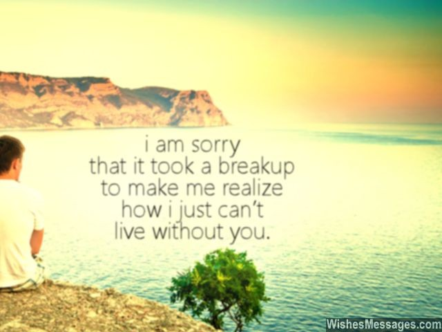 Breakup Quote I Cant Live Without You Ex Girlfriend Boyfriend