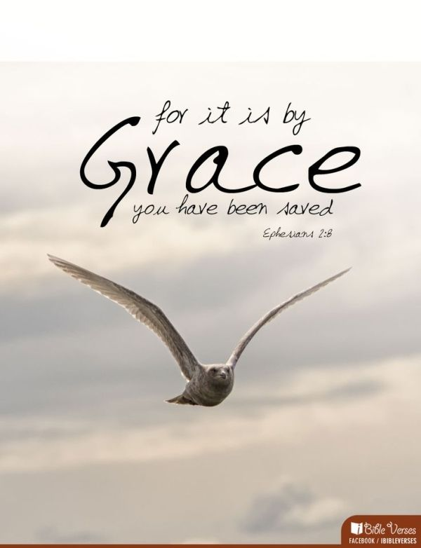 By Grace Bible Verses Bible Verses About Love Inspirational Bible Verses And Scripture Verses
