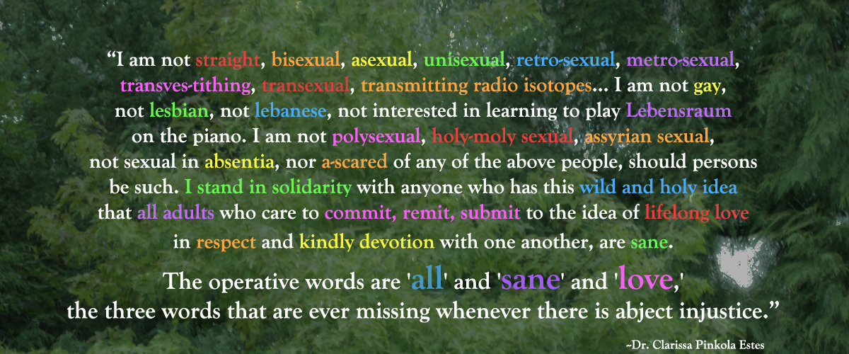 Dr Clarrisa All Sane Love Quote In Support Of Marriage Equality