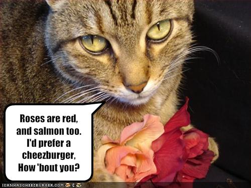 Rose Day Funny