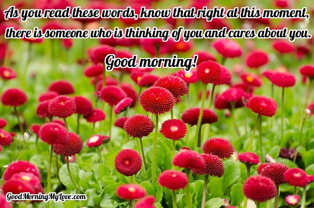 Good Morning Messages For Friends And Loved Ones