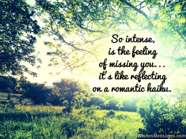 Haiku Missing You Message For Him Husband Wife