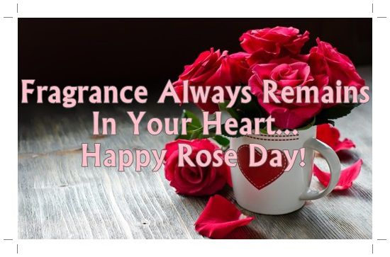 Happy Rose Day Wishes Hd Wallpapers Sms Messages Images Quotes Whatsapp Status For Facebook