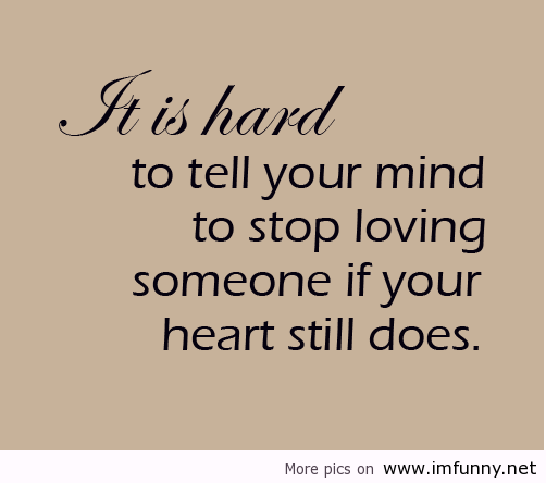 40 Best Funny Love Quotes Of All Time Interesting Funny Quotes Love