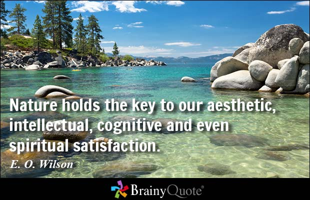 Nature Holds The Key To Our Aesthetic Intellectual Cognitive And Even Spiritual Satisfaction