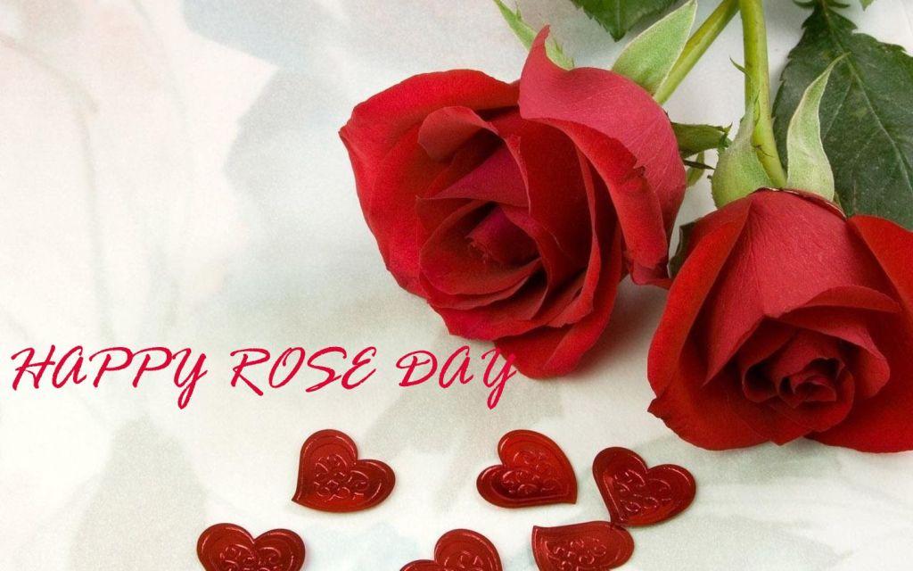 Red Rose Day Whatsapp Status Image