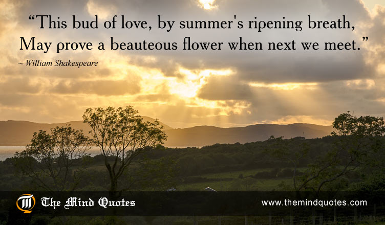 William Shakespeare Quotes On Love And Summer