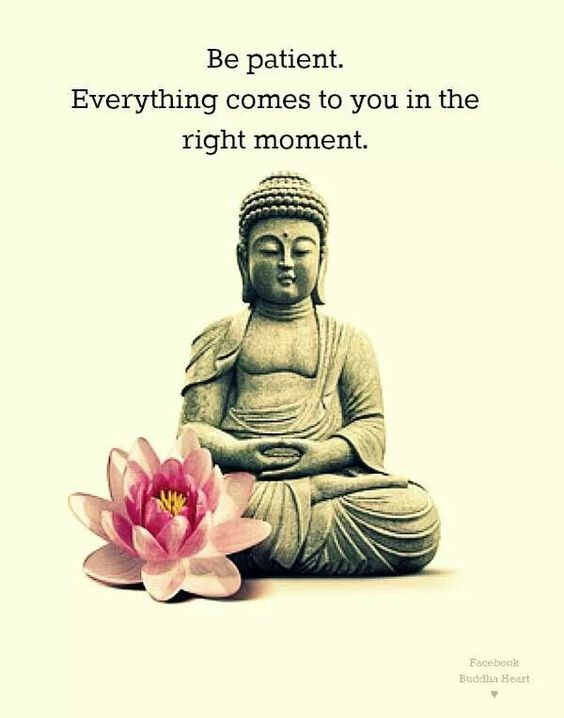 Adorable Wording Buddha Love Quotes Be Patient Everything Comes You In The Right Moment Lotus Flower