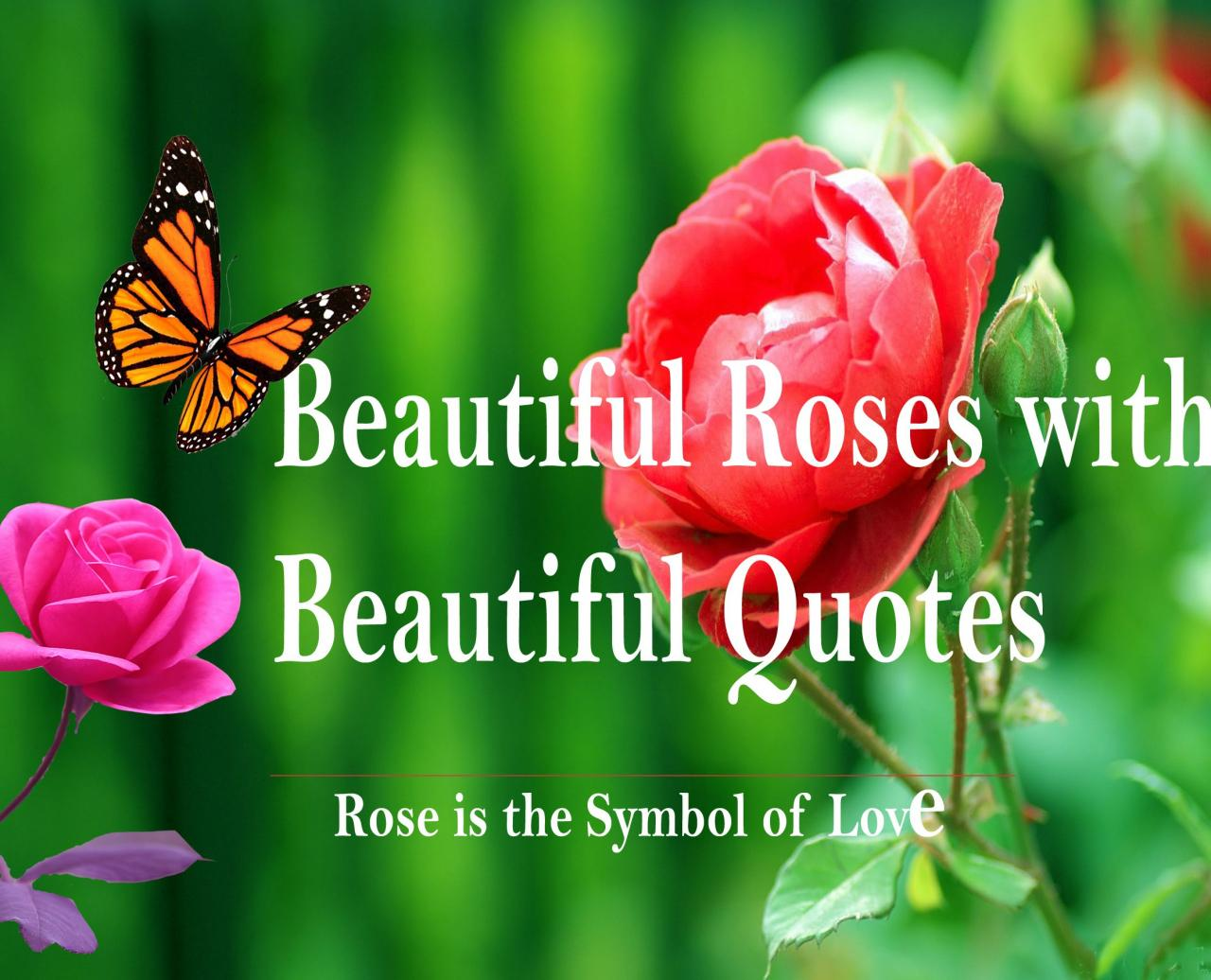 Beautiful Pictures Of Roses With Love Quotes Symbol Of Love Heart Touching Quotes Beautiful Roses