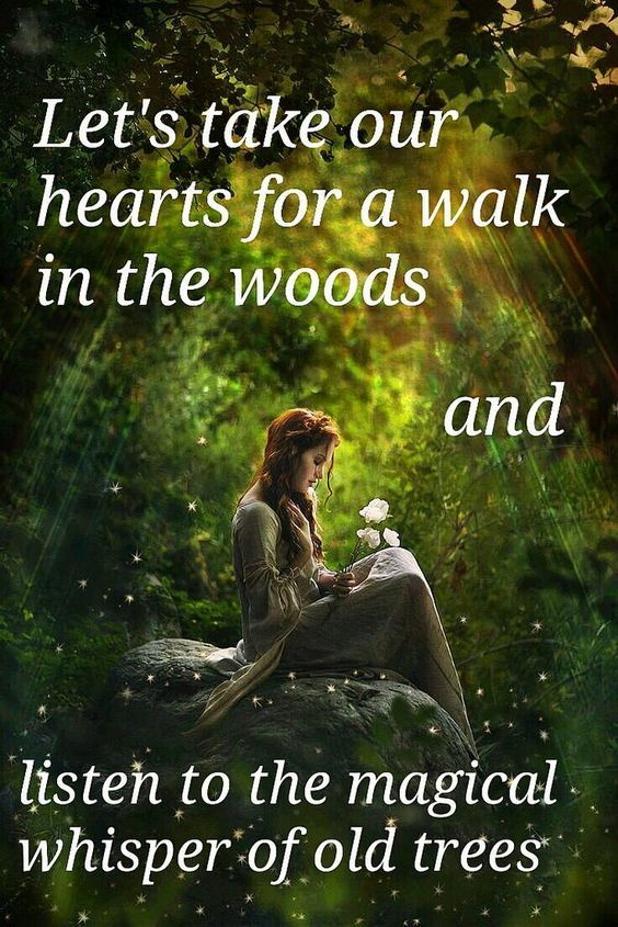 Quote Nature Lets Take Our Hearts For A Walk In The Woods And Listen To The Magical Whisper Of Old Trees