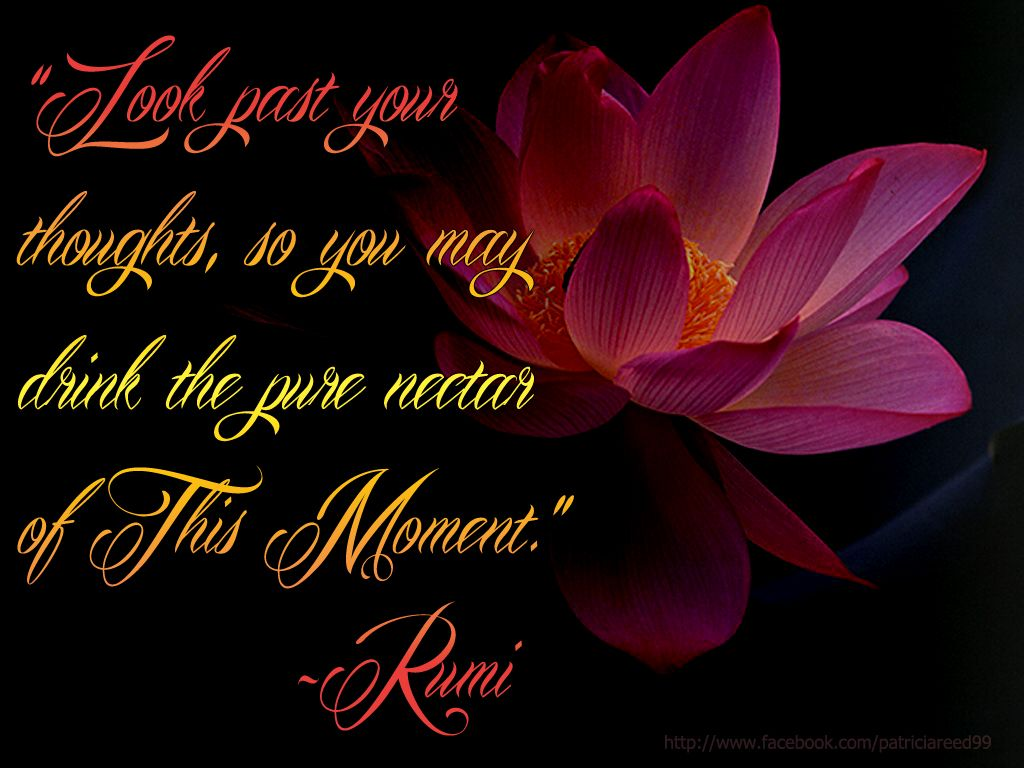 Discover And Share Rumi Love Pure Quotes Explore Our Collection Of Motivational And Famous Quotes By Authors You Know And Love