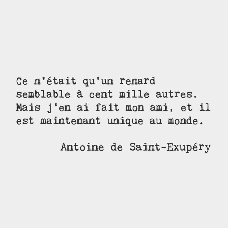 Bonjourfrenchwords He Was Only A Fox Like A Hundred Thousand Other Fo But I Have Made Him My Friend And Now He Is Unique In All The World