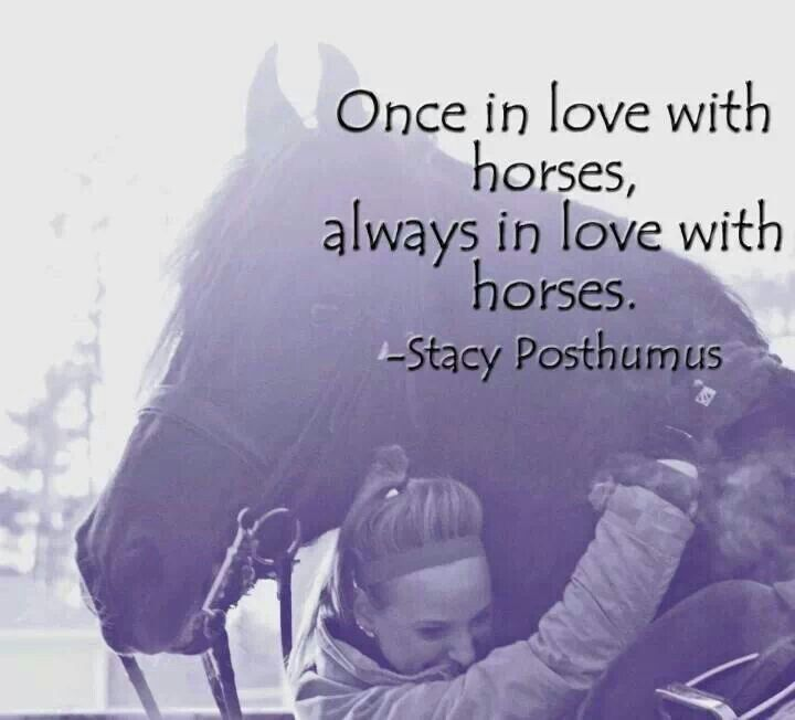 Once In Love With Horses Always In Love With Horses